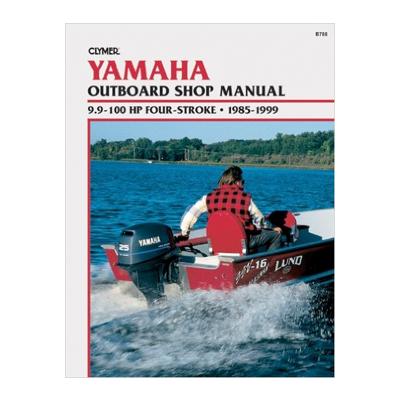 evinrude utombordare manual
