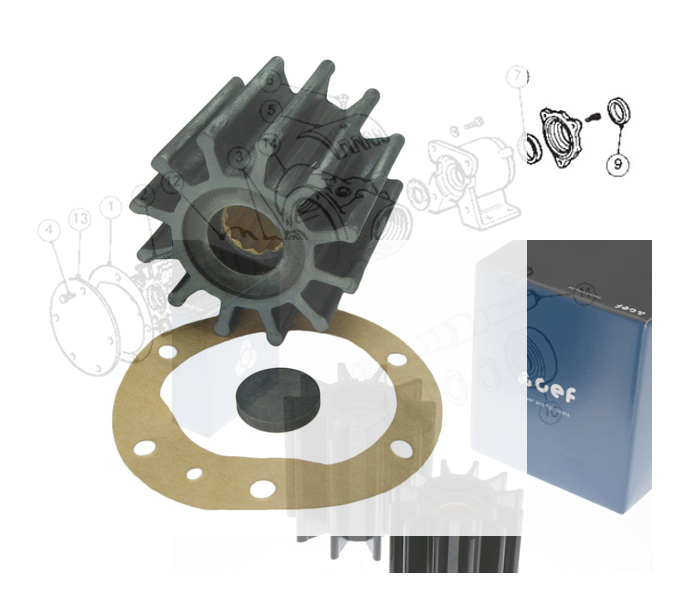 Impeller Honda